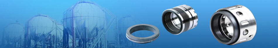 Mechanical Seal Manufacturer